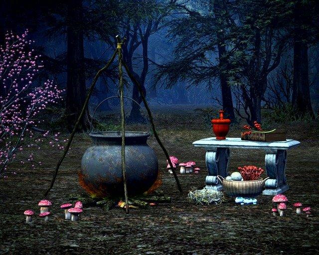 Conjuro en el bosque